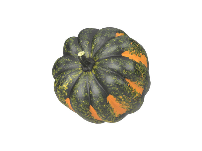 top view rendering of an acorn squash 3d model