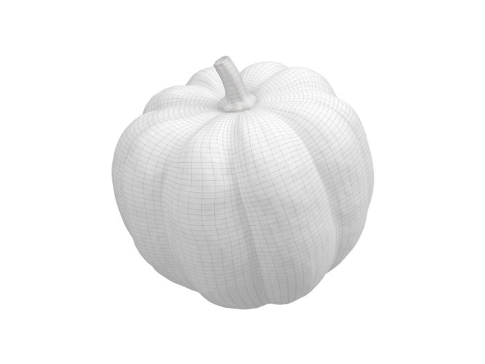 wireframe rendering of an acorn squash 3d model