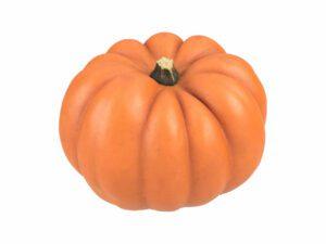 Mandarin Pumpkin #1