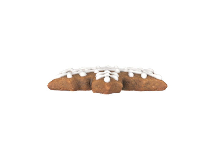 side view rendering of a gingerbread snowflake 3d model