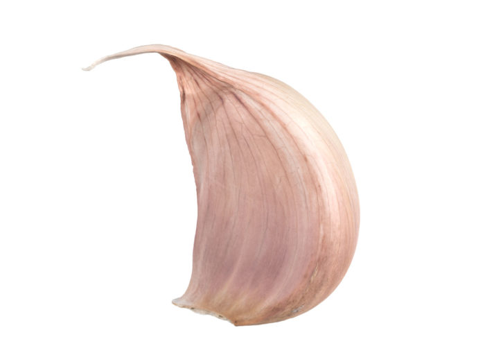 side view rendering of a garlic clove 3d model