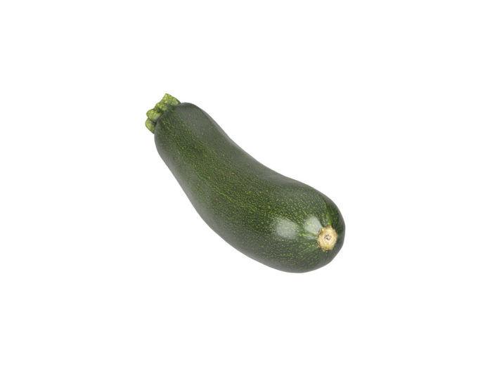 bottom view rendering of a zucchini 3d model