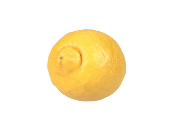 bottom view rendering of a lemon 3d model