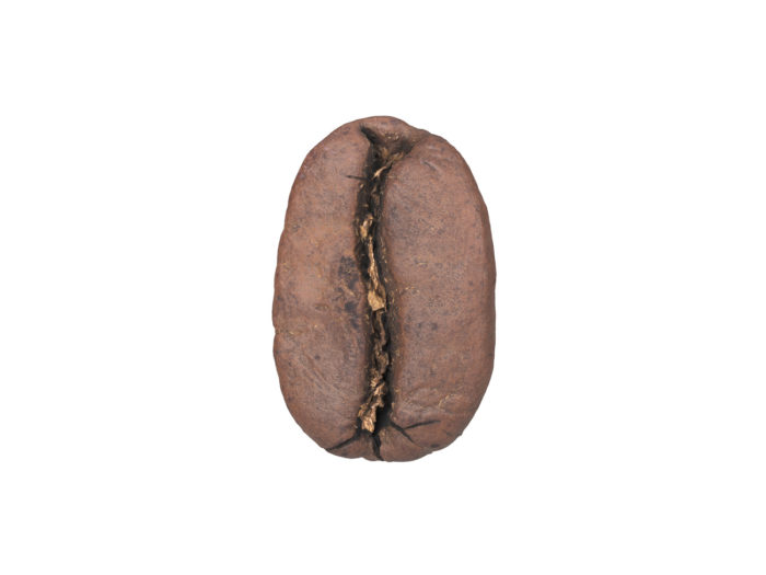 side view rendering of a coffee bean 3d model
