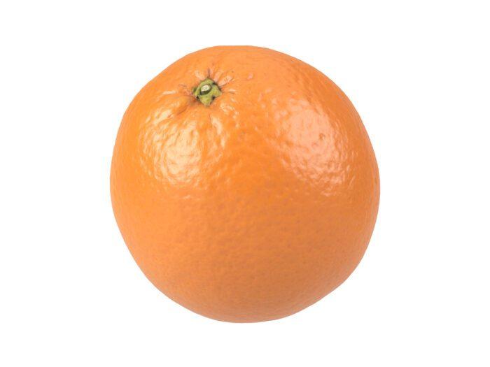 perspective view rendering of an orange 3d model