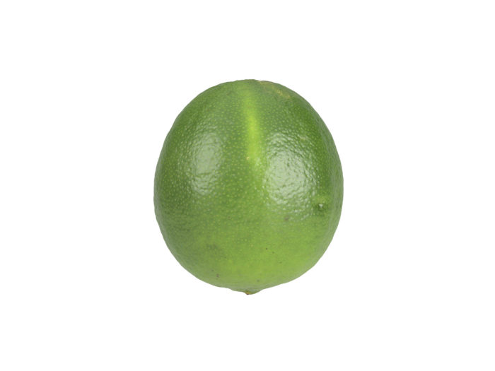side view rendering of a lime 3d model