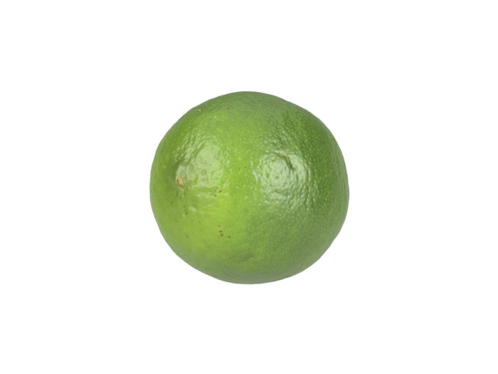 perspective view rendering of a lime 3d model