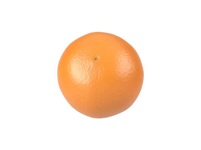 bottom view rendering of an orange 3d model