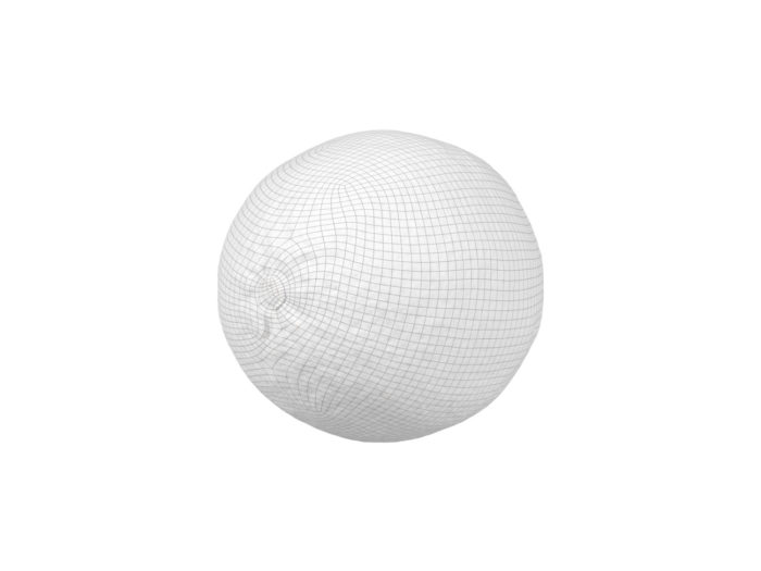 wireframe rendering of a lime 3d model