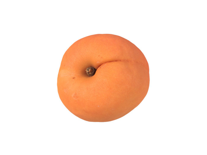 top view rendering of an apricot 3d model