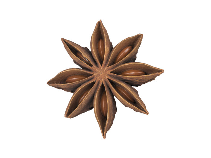 perspective view rendering of a star anise 3d model