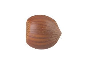 Hazelnut #3