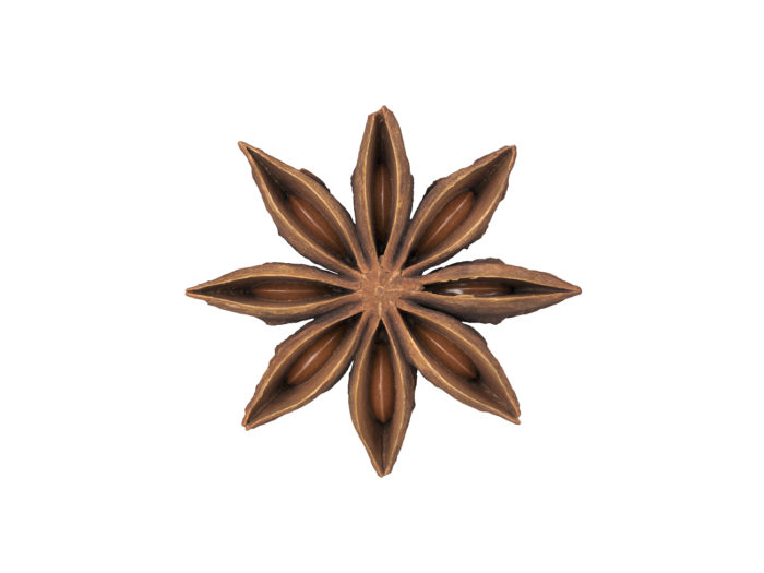 top view rendering of a star anise 3d model