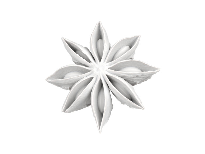 clay rendering of a star anise 3d model