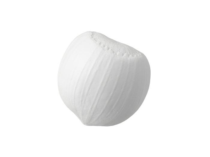 clay rendering of a hazelnut 3d model