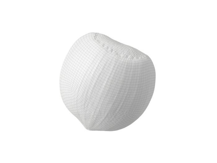 wireframe rendering of a hazelnut 3d model