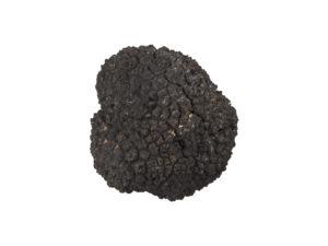 Truffle#1