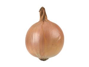 Onion #1