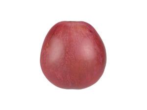 Grape #1
