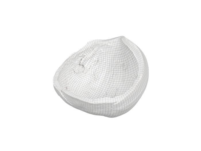 wireframe rendering of a hazelnut shell 3d model